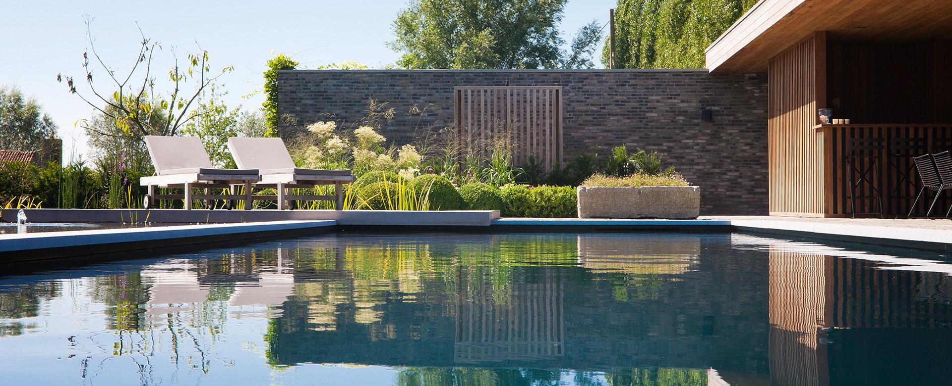 Zwembaden zwemvijvers siervijvers of een strak waterelement op maat of met een - Natuurlijk zwembad ...